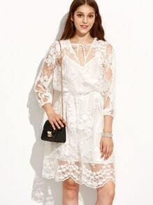 Tied Neck Sheer Lace Dress