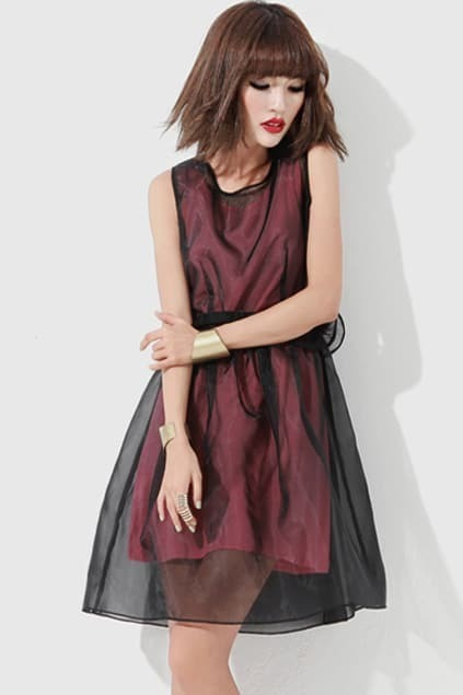 Sheer Organza Black Dress