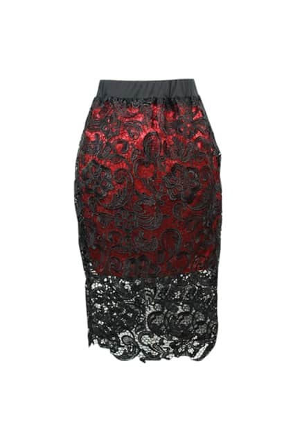 All Over Lace Bodycon Skirt