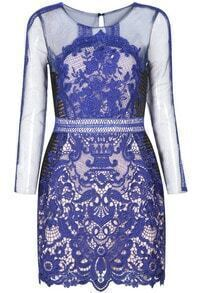 Lace Hollow Bodycon Dress