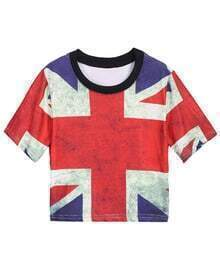 Union Jack Print Crop T-Shirt
