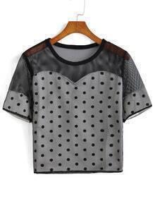 Polka Dot Sheer Mesh Black T-shirt