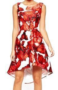 Open Back Flower Print High Low Dress
