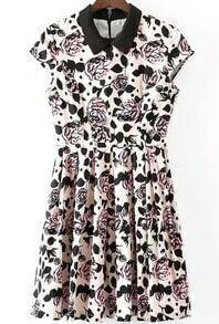 Contrast Collar Rose Print Pleated Dress