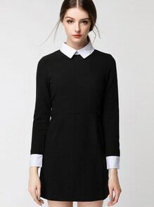 Contrast Collar Zipper Back Shirt Dress