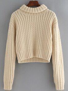 Turtleneck Long Sleeve Crop Sweater