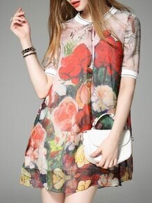 Multicolor Crew Neck Print Shift Dress