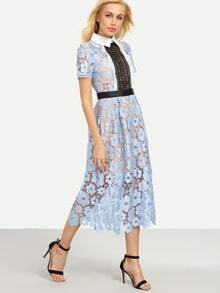 Pointed Collar Flower Lace Overlay Dress - Blue