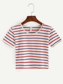 Multicolor Striped Crop T-shirt
