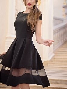Black Mesh Insert Pleated Fit and Flare Dress