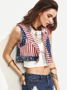 Blue Stars and Stripes Print Hooded Denim Vest