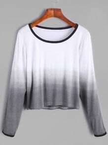 Ombre Contrast Trim Crop T-shirt