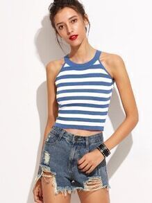 Blue Striped Knit Crop Top