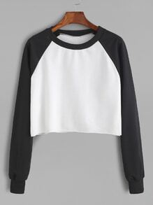 Contrast Raglan Sleeve Curved Hem Crop Sweatshirt