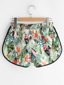 shorts170412301_3